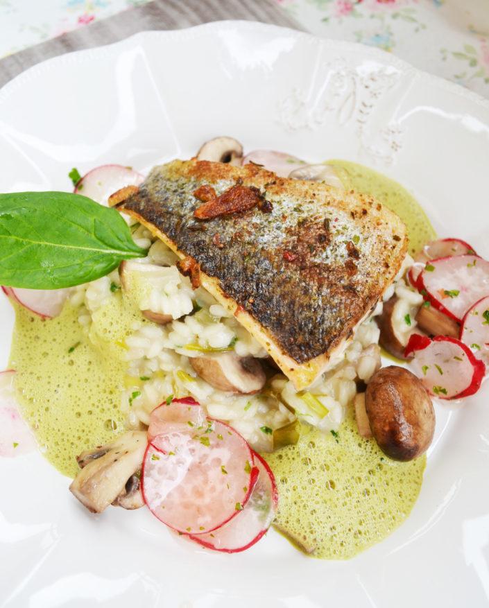 Der Frühling kann kommen! Lachsforellenfilet mit Champignon-Risotto an Kernöl-Sauce und Radieschensalat
