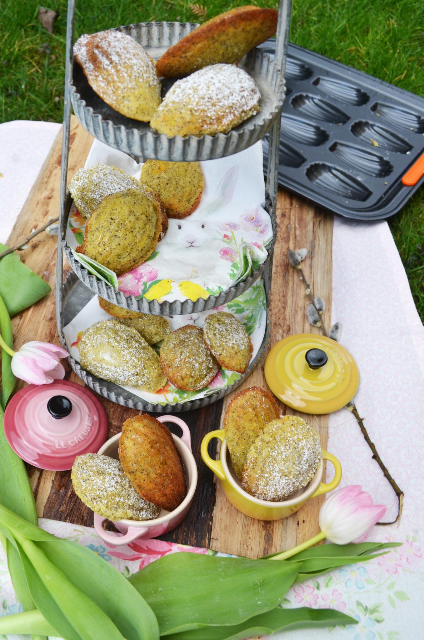 Kleine, süße Frühlingsboten! Zitronen-Mohn-Madeleines